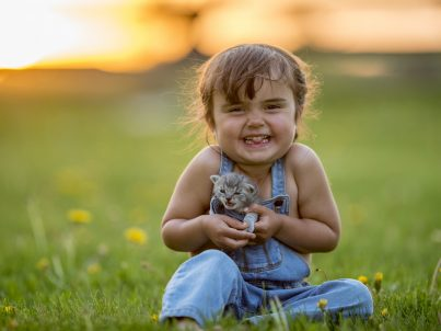 A young girl is sitting outside in a field on a summer day. She is surrounded by dandelions. The girl is smiling at the camera while cuddling a cute kitten.